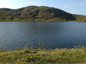TurtilJamnfjellet25-8-2013b10
